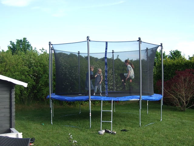 Garden Job Number 2 - Clean The Trampoline